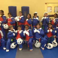 TaeKwonDo Olympic Competition Team