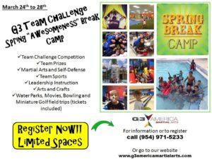 Spring Break Martial Arts Camp